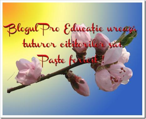 Paste fericit_1