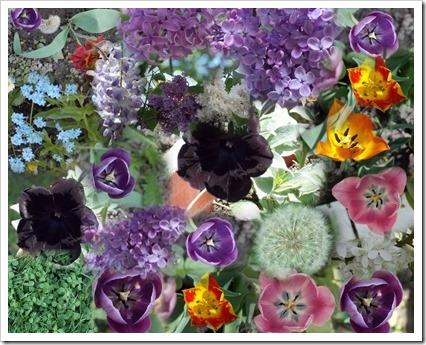 Colaj flori2